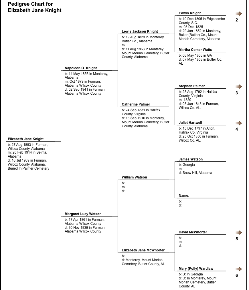 Elizabeth Knight pedigree chart